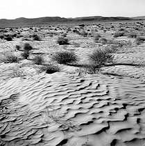 Tunisia. Drift desert in the South, after Tataouine, in February 1965. © Hélène Roger-Viollet et Jean Fischer / Roger-Viollet