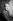 Valéry Giscard d'Estaing (né en 1926), homme d'Etat français, alors député du Puy-de-Dôme. Paris, 1956.  © Laure Albin Guillot / Roger-Viollet