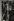 Catherine Deneuve (née en 1943), actrice française, dans les salons d'Yves Saint-Laurent. Paris, 1967.  © Jean Mounicq / Roger-Viollet