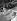Mariage d'Edith Piaf avec Jacques Pills à New York (Etats-Unis). La chanteuse et son témoin, Marlene Dietrich. Au second plan : Louis Barrier, impresario, témoin de J. Pills. 20 septembre 1952. © Roger-Viollet