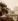 Le Pont-Neuf pendant l'inondation, côté rive gauche, Paris (Ier et VIème arr.). Photographie d'Eugène Atget (1857-1927), vers 1907. Paris, musée Carnavalet. © Eugène Atget / Musée Carnavalet / Roger-Viollet