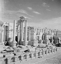 The antique theatre of Palmyra (Syria), November 1953. © Hélène Roger-Viollet / Roger-Viollet