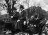 Arrivée du président américain Wilson en compagnie du président français Poincaré, avenue du Bois. Paris (XVIème arr.), décembre 1918. © Maurice-Louis Branger/Roger-Viollet