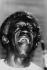 Art Blakey (1919-1990), musicien de jazz américain, vers 1970. © Alinari/Roger-Viollet