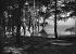 Camping in Cavalière (Var), about 1935. © Charles Hurault/Roger-Viollet