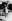 Le prince Juan Carlos (né en 1938), âgé de douze ans. 1950. © Ullstein Bild/Roger-Viollet