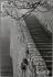 Le Mont-Saint-Michel (Manche), 1995. © Jean Mounicq/Roger-Viollet