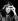 Susan Sontag (1933-2004), romancière, réalisatrice et essayiste américaine, 1986.  © Wolfang M. Weber/Ullstein Bild/Roger-Viollet