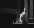 Henri Salvador (1917-2008), chanteur français. 1956.      © Bernard Lipnitzki/Roger-Viollet