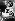 Shirley Temple (1928-2014), actrice américaine, jouant du ukulélé, 1937. © Ullstein Bild/Roger-Viollet