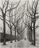 Boulevard Edgar-Quinet, along the Montparnasse cemetery. Paris (XIVth arrondissement), 1950-1969. Photograph by Edith Gérin (1910-1997). Bibliothèque historique de la Ville de Paris. © Edith Gérin / BHVP / Roger-Viollet
