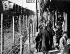 Organisation de la défense à Shanghaï (Chine), à l'époque des affrontements entre les communistes et Tchang Kai-Chek (Jiang Jieshi, 1887-1975), général et homme d'Etat chinois, 1927. © Roger-Viollet