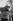 Fidel Castro (1926-2016), homme d'Etat et révolutionnaire cubain, coupant la canne à sucre. Cuba, vers 1960. © Gilberto Ante/BFC/Gilberto Ante/Roger-Viollet