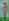 Poupée Barbie. 2001. © TopFoto / Roger-Viollet