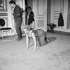 """Une Parisienne"", film de Michel Boisrond. Brigitte Bardot. France, 28 mars 1957. © Alain Adler / Roger-Viollet"