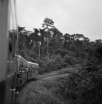 The Abidjan-Niger single railway line which crosses the rainforest and the steppes once a week, from Abidjan to Ouagadougou. 1963. © Hélène Roger-Viollet / Roger-Viollet