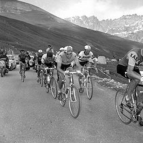 1969 Tour de France. Stage in the mountains. Eddy Merckx, Belgian racing cyclist, with, on his left, Roger Pingeon and, on the background, behind, on the center, Raymond Poulidor, French racing cyclists. © Roger-Viollet