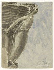 "Emile Antoine Bourdelle (1861-1929). ""Reims"". Plume et encre noire, aquarelle. 1914-1929. Paris, musée Bourdelle.  © Musée Bourdelle/Roger-Viollet"