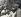 Fidel Castro (1926-2016), homme d'Etat et révolutionnaire cubain, parmi des révolutionnaires. Cuba, vers 1960. © Imagno/Roger-Viollet