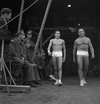 The Clérans, trapeze artists. France, years 1950. © Gaston Paris / Roger-Viollet