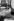 Fidel Castro (1926-2016), homme d'Etat et révolutionnaire cubain. Cuba, vers 1965. © Ullstein Bild/Roger-Viollet