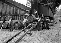 Transport of barrels of wine at the Bercy warehouses. Paris, circa 1903. © Maurice-Louis Branger/Roger-Viollet