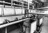 Fabrication de la margarine. Vue de l'intérieur de l'usine. France, 1953. © Jacques Boyer/Roger-Viollet