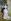 """Auguste Renoir (1841-1919). """"La Danse à la ville"""". Huile sur toile, 1883. Paris, musée d'Orsay.   © Roger-Viollet"""