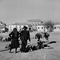 Ciudad Rodrigo (Spain). Scene at the market. 1952. © Roger-Viollet