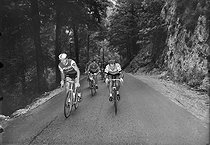Jacques Anquetil (1934-1987) and Raymond Poulidor (1936-2019), French racing cyclists. © Roger-Viollet