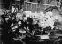 Plantes en floraison forcée dans des serres chauffées par radiation. Paris, 1935.      © Jacques Boyer/Roger-Viollet