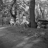 "Shooting of ""Dragées au poivre"" (Sweet and Sour), film by Jacques Baratier. Sophie Daumier. France-Italy, on April 30, 1963. © Alain Adler / Roger-Viollet"