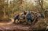 Guerre 1914-1918. Obusier en forêt. Verdun,  septembre 1916. Fac-similé de plaque autochrome de Jules Gervais-Courtellemont. © Bilderwelt/Roger-Viollet