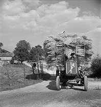 Coming back from the harvest. Charente (France), 1950's. Photograph by Janine Niepce (1921-2007). © Janine Niepce/Roger-Viollet