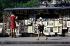 Bouquiniste sur les quais. Paris, juillet 1969. Photographie de Gösta Wilander (1896-1982). Paris, musée Carnavalet. © Gösta Wilander / Musée Carnavalet / Roger-Viollet