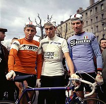 Jacques Anquetil, Eddy Merckx, Felice Gimondi, racing cyclists, all three winners of the Tour de France. © Roger-Viollet