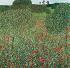 """Gustav Klimt (1862-1918). """"Champ de pavot"""". Huile sur toile, 1907. © Imagno/Roger-Viollet"""