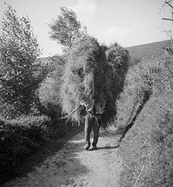 Country life. Farmer carrying hay on his back. Ariège region (France), 1931. Photograph by François Kollar (1904-1979). Paris, Bibliothèque Forney. © François Kollar / Bibliothèque Forney / Roger-Viollet