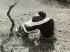 Couple d'amoureux assis dans un pré. Italie, 1974. © Vincenzo Balocchi/Alinari/Roger-Viollet