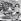 Konrad Lorenz (1903-1989), scientifique comportementaliste autrichien, lauréat du prix Nobel, dans son bureau. 1966. © Imagno / Roger-Viollet
