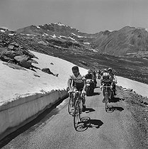 1964 Tour de France. Federico Bahamontes (on the left), Spanish racing cyclist and Jacques Anquetil, French racing cyclist, during a stage in the mountains. © Roger-Viollet