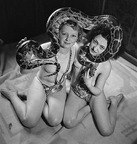 Cirque. Femmes aux serpents. France, vers 1940. © Gaston Paris / Roger-Viollet