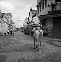 Fruit seller. Recife (Brazil), 1957. © Roger-Viollet