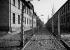 Camp de concentration d'Auschwitz (Pologne), 1960. © Fedele Toscani/Alinari/Roger-Viollet