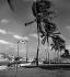 La Havane (Cuba). La promenade du port. Mars 1959. © Roger-Viollet