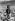 Jeune Inuite. Cap York (Groenland), juillet 1927.  © Ullstein Bild/Roger-Viollet