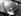 Joe Frazier (1944-2011), boxeur américain, après sa victoire en douze rounds contre George Chuvalo (né en 1937) boxeur canadien d'origine croate. New York (Etats-Unis), Madison Square Garden, 20 juillet 1967. © TopFoto / Roger-Viollet