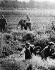 Troubles aux Sudètes. Réfugiés traversant la frontière au niveau d'un ruisseau. Aux alentours du 21 ou 22 septembre 1938. © Ullstein Bild/Roger-Viollet