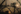 La cathédrale Notre-Dame de Paris. Superposition effectuée lors de la prise de vue. Paris (IVème arr.), 1966. © Jean Mounicq / Roger-Viollet