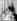 La princesse Elisabeth d'Angleterre, son époux le prince Philip, et deux de leurs enfants : le prince Charles et la princesse Anne. Londres (Angleterre), Clarence House, 9 janvier 1951. © PA Archive / Roger-Viollet